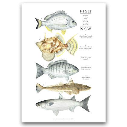 WH FISH | Art Print