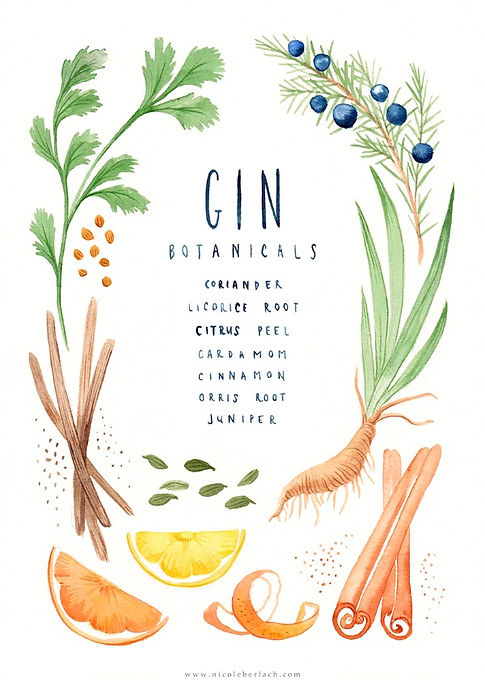 Nicole Berlach Gin Artwork Watercolour