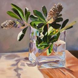 'Banksia in morning Light'