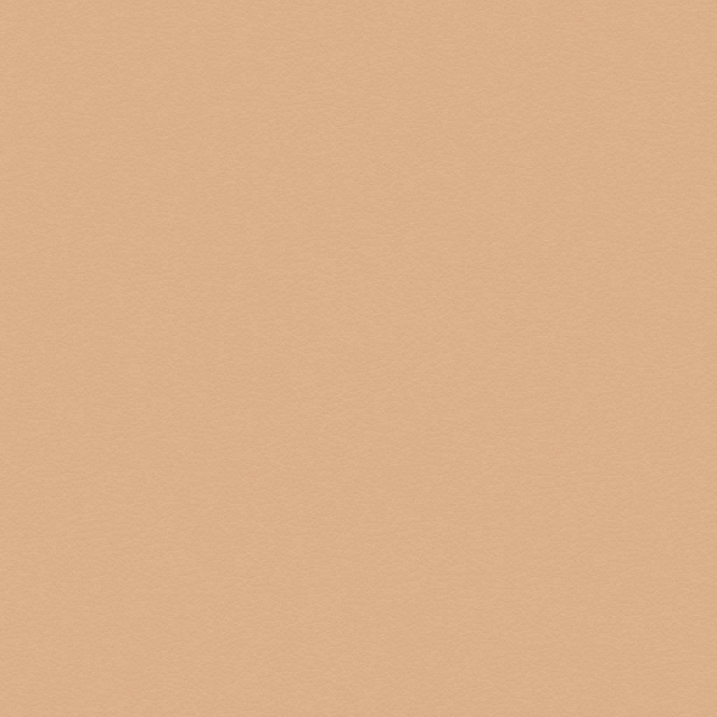 Paloma Leather