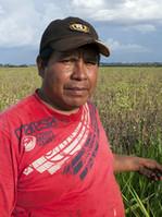 Vertreter der Guarani vor Gensojafeld