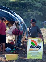 Indigene üben Kritik am Roundup