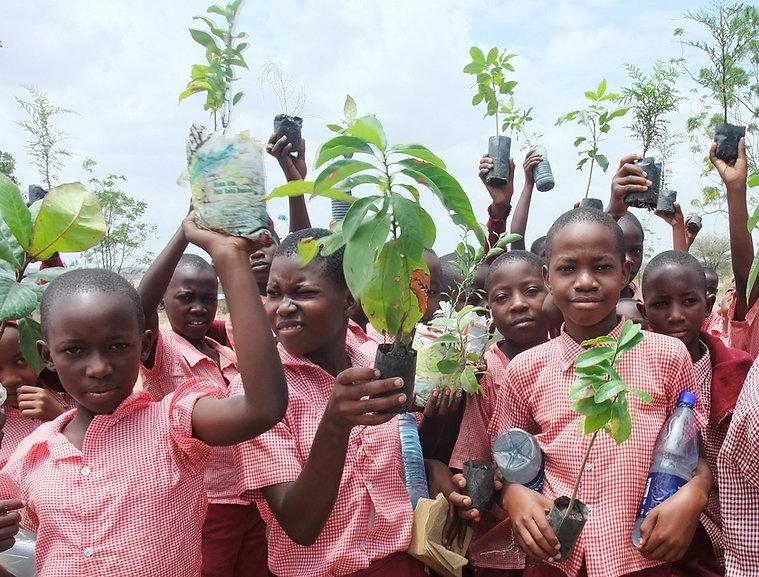 Children-seedlings 51202846981_7949ef3a7