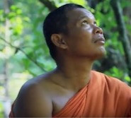 Buddhists ordain trees as monks to save forests