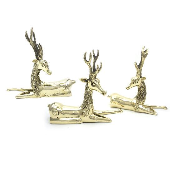 Small Deer Family
