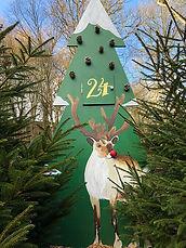 bolton-abbey-festive-trail-main-img.jpg