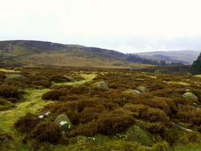 Natural Flood Management work continues on Ilkley Moor