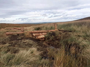 Leaky barriers installed in Ilkley Moor as part of flood management project