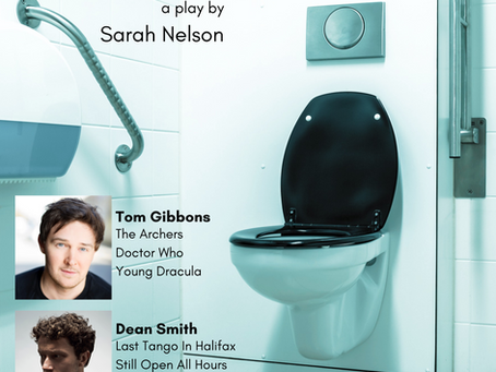 A play set entirely in the disabled toilet......