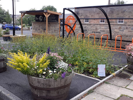 Cutting the mustard at Ilkley's new pocket park
