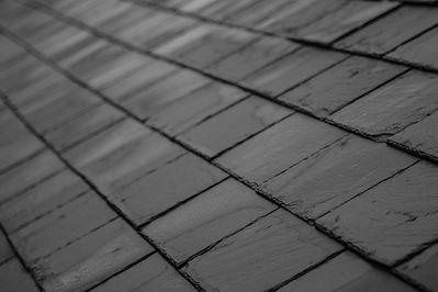 roof-1479206611CWB.jpg