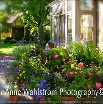 marge's garden