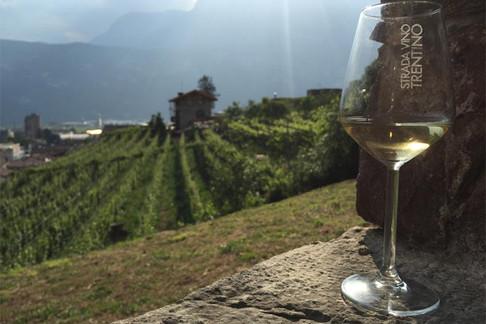 strada del vino.jpg