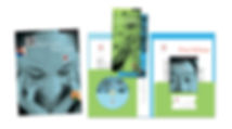 alf-folder-group.jpg