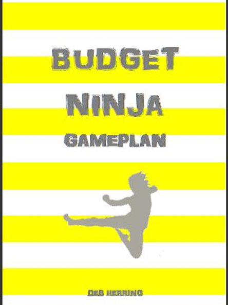 Budget Ninja GAMEPLAN