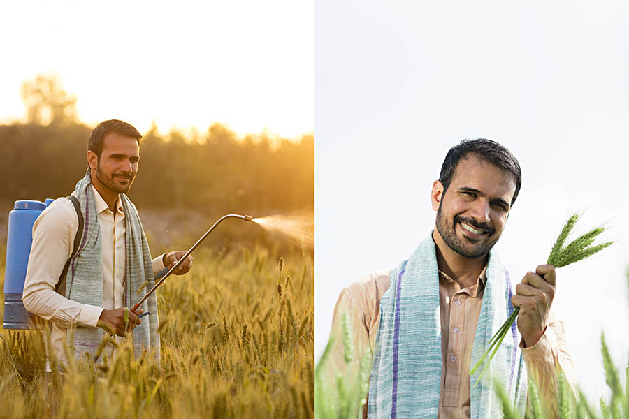 farmer_3.jpg