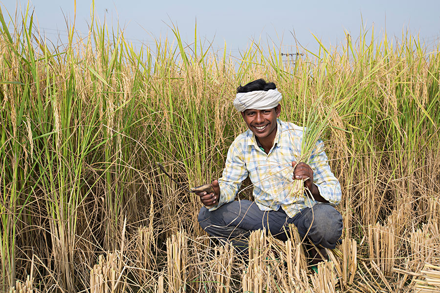 farmer_2.jpg