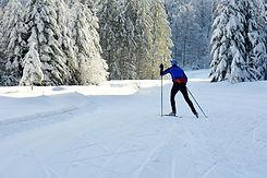 Auberge Drosera Gérardmer Ski de fond Raquettes Groupes Famille Séminaires Vosges