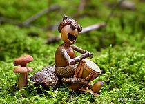 Accomagnateur montagne musique Vosges