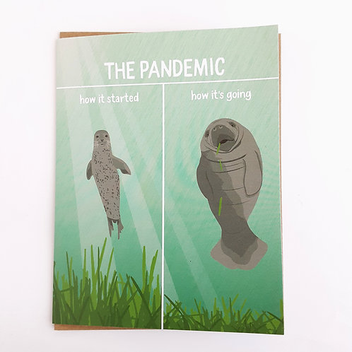 The Pandemic, how it started/how it's going