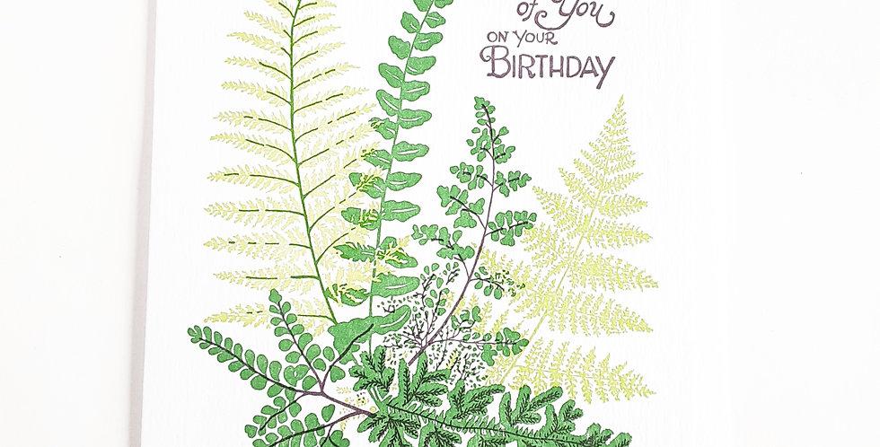 Birthday Ferns