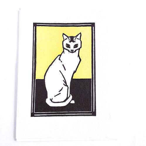 White Cat on Green
