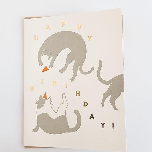 Happy Birthday gray cats