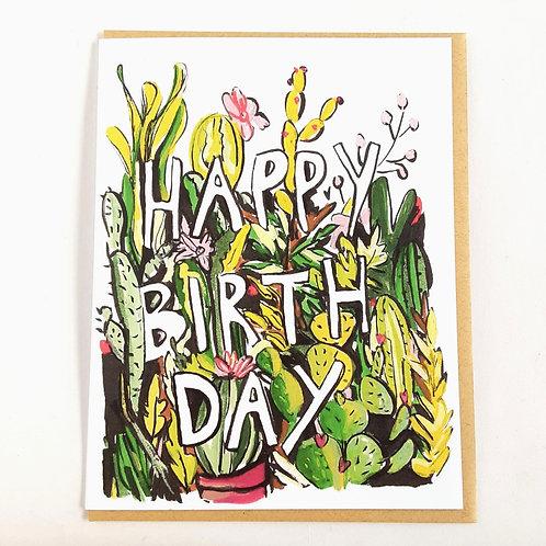 Birthday Cacti (Ivy House)