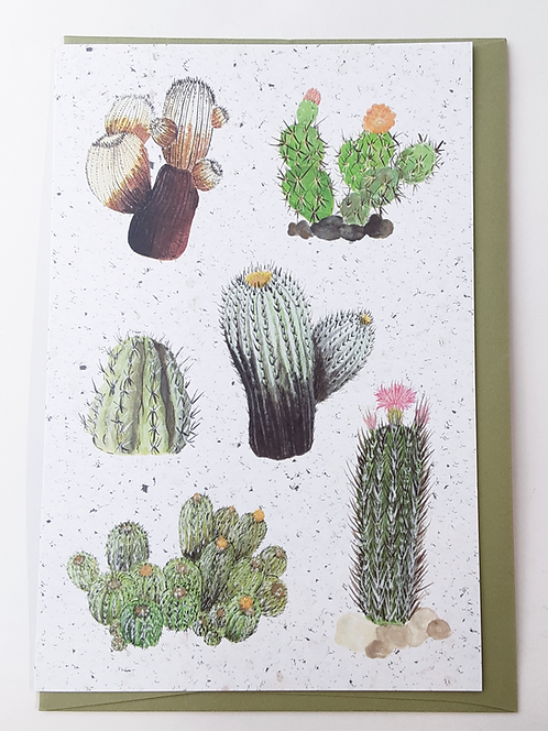 Cactus Card by Stitch Prism