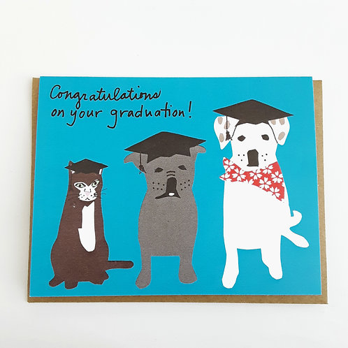 Congratulations on Your Graduation dogs & cat on blue