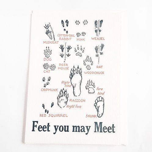 Feet You May Meet