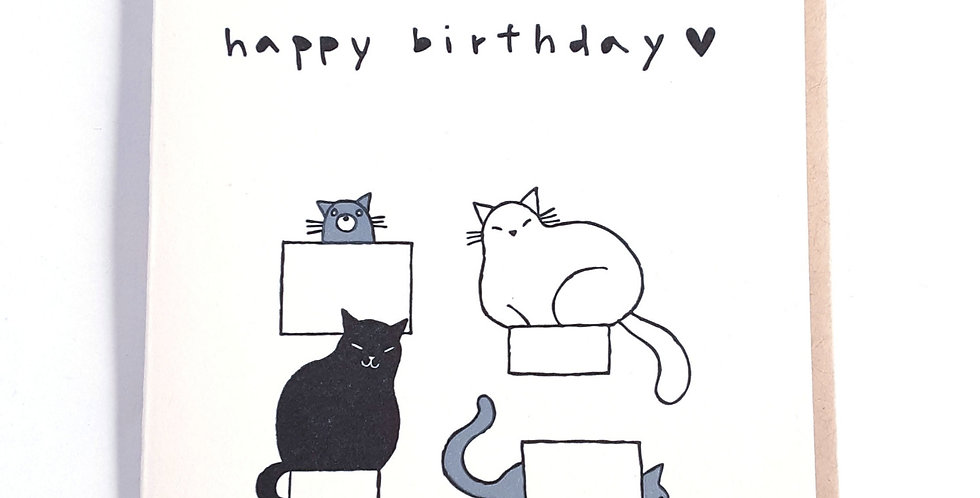 Birthday cats in boxes