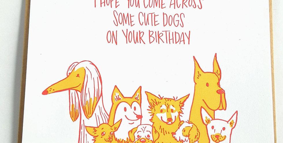 Cute Dogs Birthday
