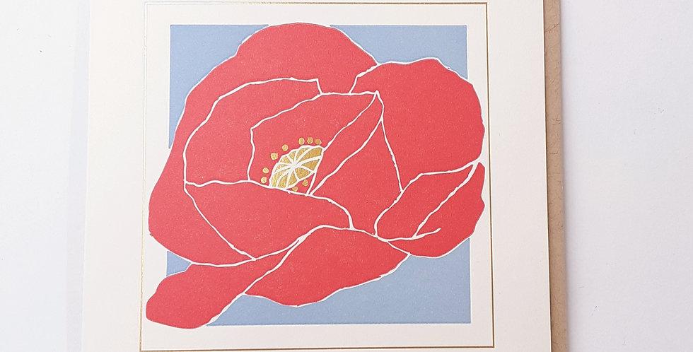 Poppy on Blue Square