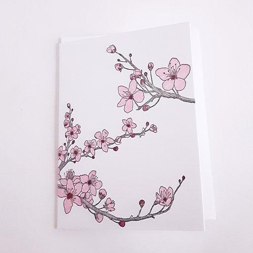 Cherry Blossom (plain envelope)