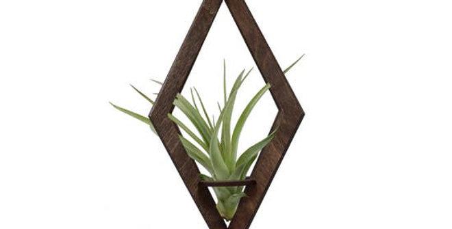 Geometric Air Plant Ornament (Large)