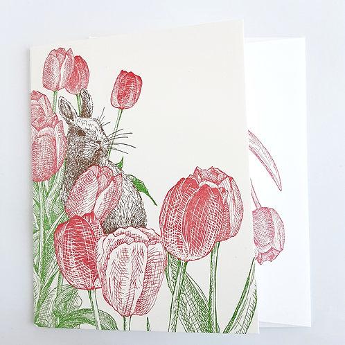 Tulips & Bunny