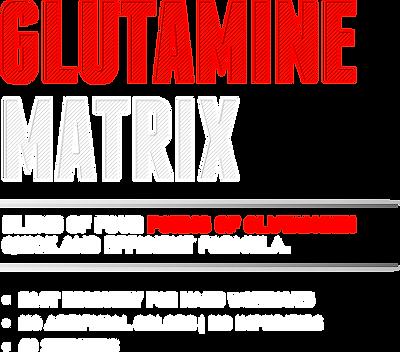 GlutamineMatrix.png