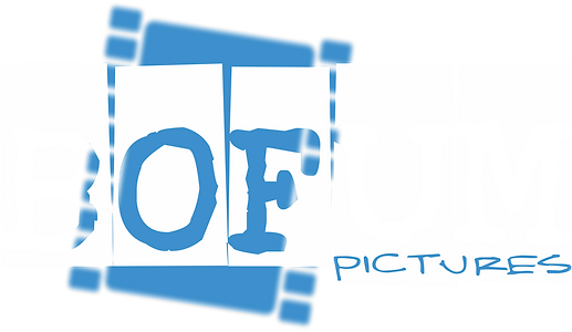 2019 - BOFUM LOGO - CURRENT BLUE.png