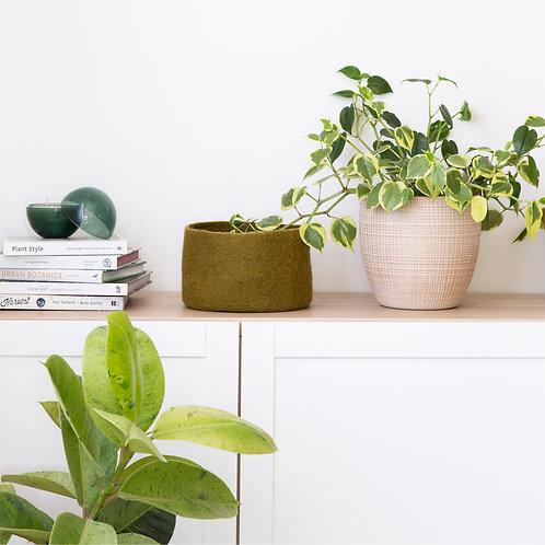 Medium Vadu multipurpose bowls