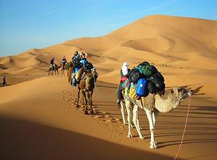 Merzouga Cameltrekking