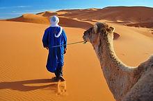 Merzouga desert cameltrekking