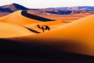 Sahara merzouga desert.jpg