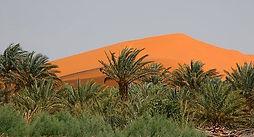 DESERT TOURS IN MOROCCO