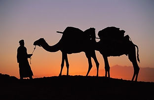 Merzouga desert trekking