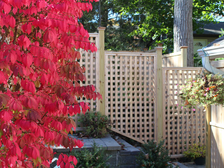 ActiveYards Favorites to Look Out for at a Fence Store Near Me in Bergen County & Morris County, NJ