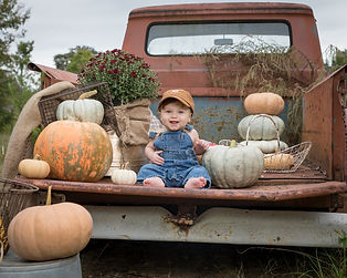 pumpkin_patch19.jpg