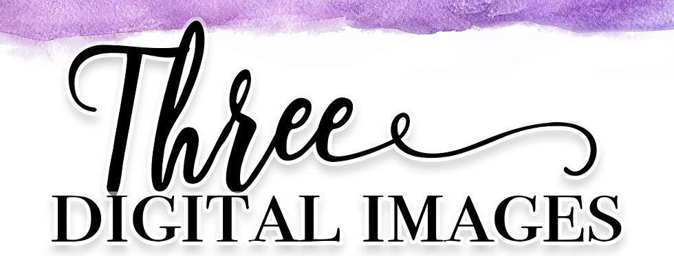 Three Digital Images $65
