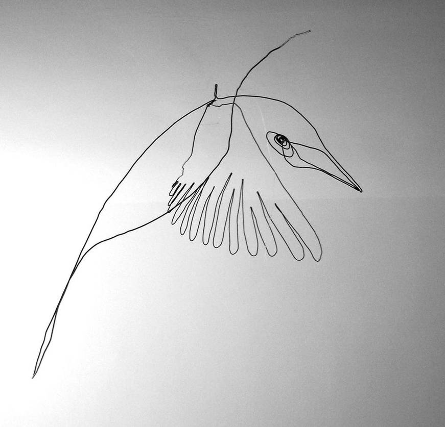 oiseauweb_02-1000jpg
