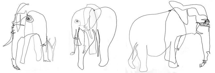 elephantweb_17-1000jpg
